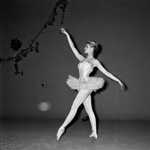 Ballerina (18)