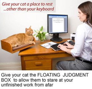 funny-cat-resting-desk-add-on