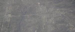 Nazca_colibri