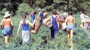 America's 1970s Hippie Communes (12)