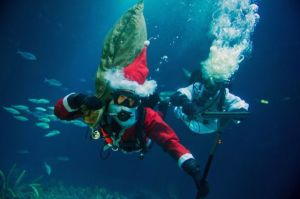 """(L-R) Divers Henning May and Alexander Dressel dive dressed up as """"Santa Claus"""" and """"Angel"""" in the schooling fish basin at Ozeaneum in Stralsund, Germany, 24 November 2014. They clean the 30 centimeter thick panorama acrylic glass of the basin. The schooling fish basin is the biggest in the ocean museum Ozeaneum. (Photo by Stefan Sauer/EPA)"""