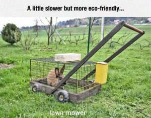 funny-lawn-mower-bunny-cage