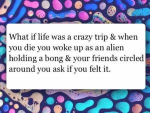funny-life-trip-alien-bong