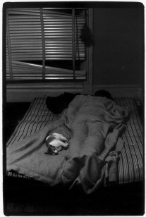 Person sleeping with a cat in a dark room