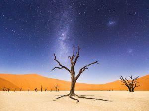 deadvlei-africa-namibia_91343_990x742