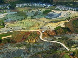 farming-terrace-vietnam_91115_990x742