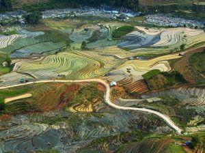 farming-terrace-vietnam_91115_990x742