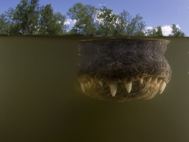 national_geographic_03