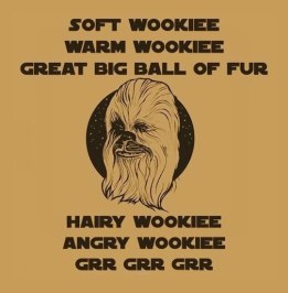 cool-Big-Bang-Theory-soft-kitty-Chewbacca