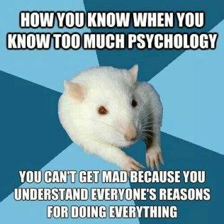 psyfunny-psychology-rat-mad-reasons