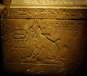 prince-thutmose-cat