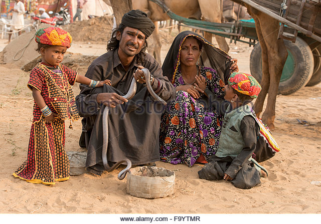 family-with-cobra-camel-fair-pushkar-f9ytmr.jpg
