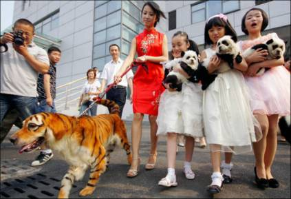 this_could_only_happen_in_china_640_04