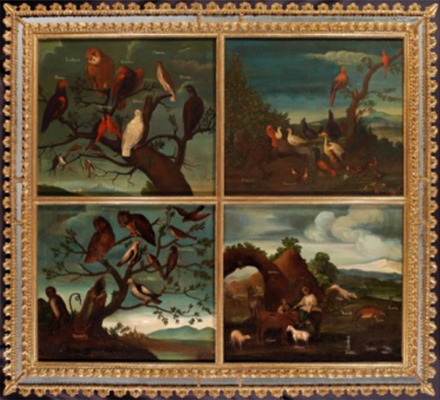 "Buenaventura José Guiol, Birds of Mexico, ca. 1770-80, oil on canvas, 62.3 x 55.5 cm. Denver Art Museum, Collection of Jan and Frederick Mayer Buenaventura José Guiol, Birds of Mexico, ca. 1770-80, oil on canvas, 62.3 x 55.5 cm. Denver Art Museum, Collection of Jan and Frederick Mayer Formerly in the collection of Jacqueline Goldman, Paris ""This set of four paintings"
