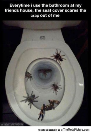 cool-friend-toilet-seat-cover-spider