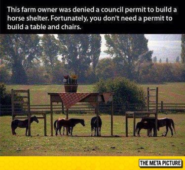 funny-horse-shelter-table-chairs-big