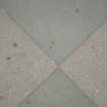 NYC-X