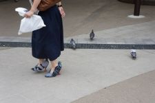 shoes_pigeons_01