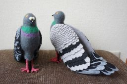 shoes_pigeons_06